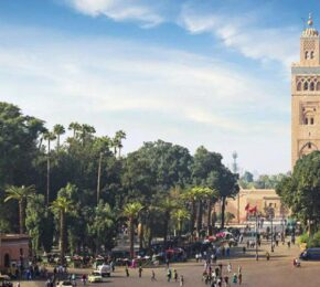 Marrakech Excursions